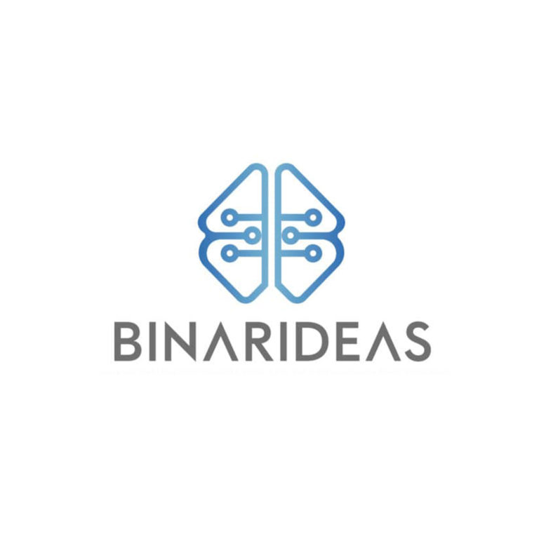 Desarrollo de identidad de marca para Binarideas